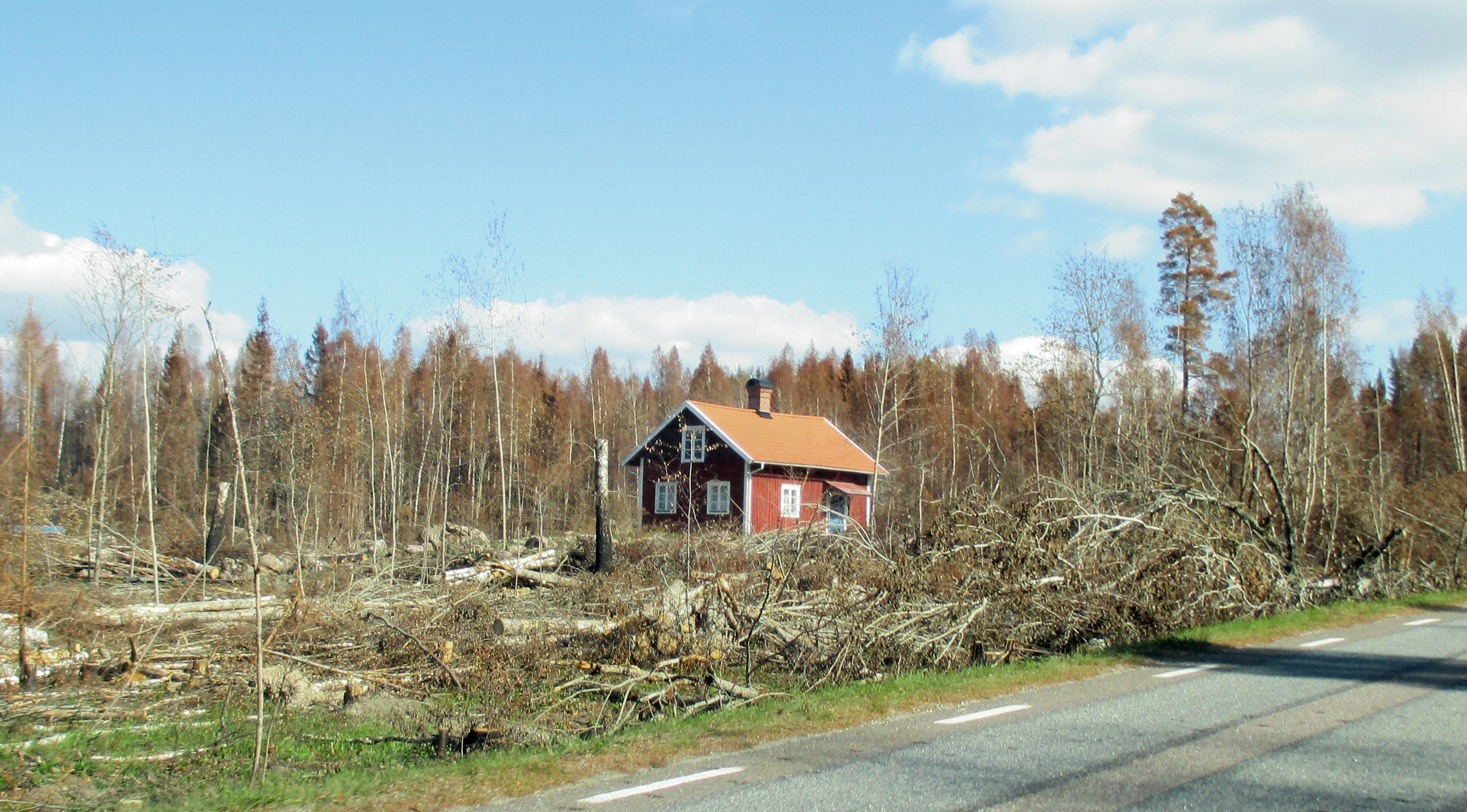 A Swedish cottage that managed to escape the Västmanland forest fire of 2014. Photo: Wikipedia