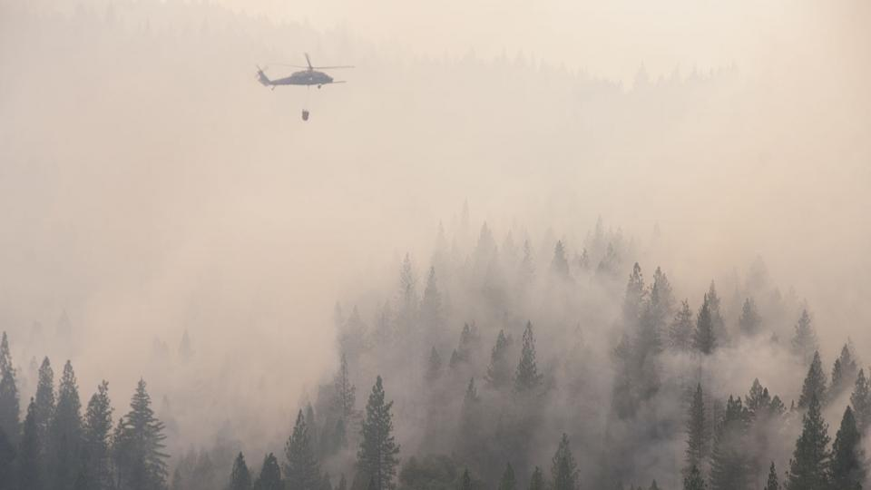 Fire in Yosemite National Park 2013.