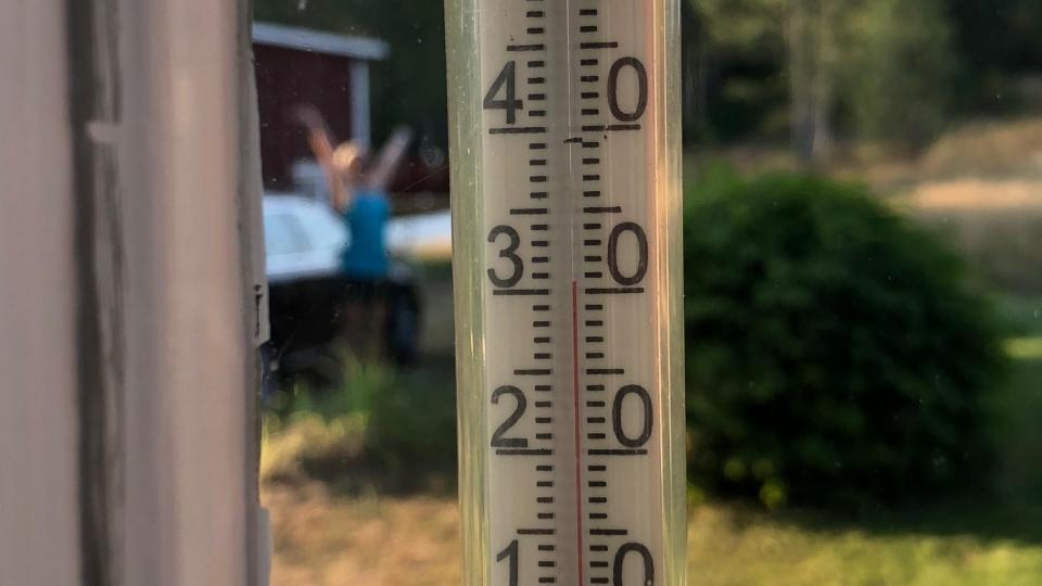 Thermometer showing 31 degrees Celsius in Sweden, summer of 2018. Photo: Bjorn Ulfsson