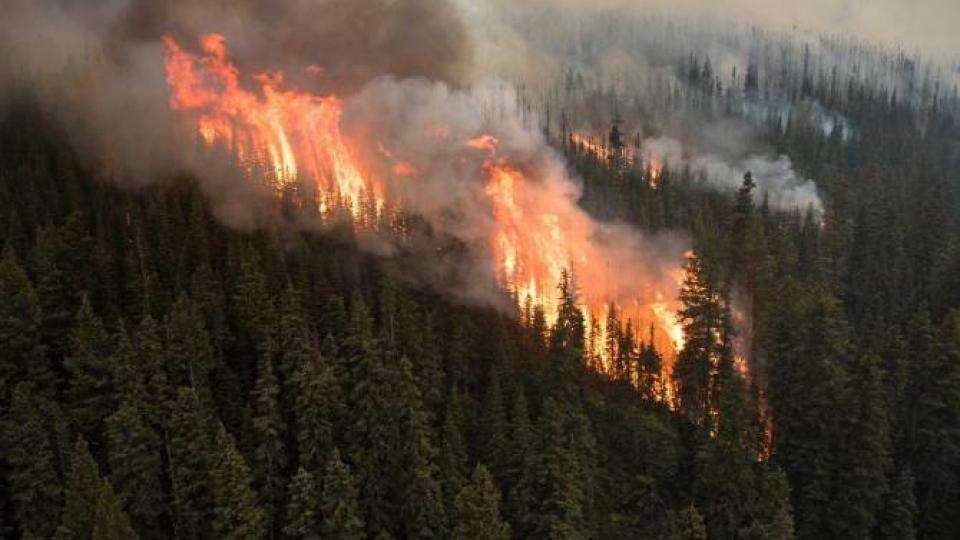 The Boundary Wildfire. Photo by Parks Canada / Ryan Peruniak