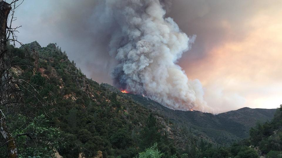 Ferguson Fire near Yosemite National Park on July 14, 2018. Probably taken from El Portal, California, showing fire on a ridge above the Merced River. Photo by Wikipedia