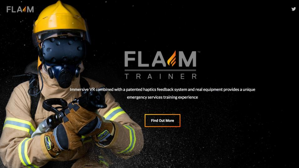 FLAIM training