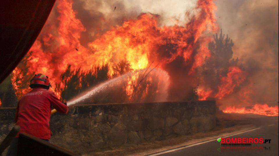 A Portuguese firefighter fighting a wildfire. Photo by Bombeiros.pt