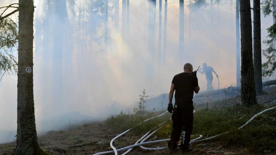 Firefighters fighting a forest fire near Norrköping, Sweden on Tuesday. Photo by Niklas Luks
